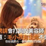 拒絕聘請會打狗的美容師! 劉淑蕙:毛小孩有生命不是物品