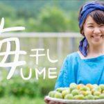 美容・健康に効果抜群!日本最高の梅干し作りを体験ライブ放送!- How to make Umeboshi/Amazing japanease food