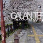 美容室ガラントリー 名古屋 新瑞橋のレコメンドスポット