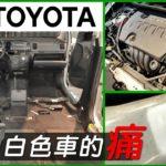 【白色車的痛】黑刁底的TOYOTA WISH 洗車美容 舊車翻新整理全攻略!