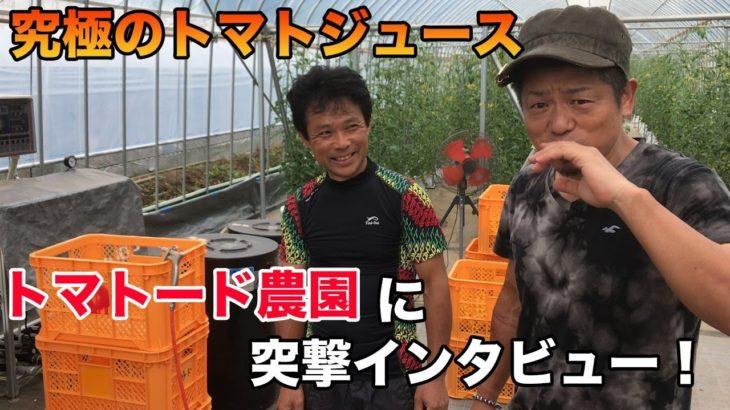 【美容】【健康】究極のトマトジュース!トマトード農園に突撃インタビューしてみました!