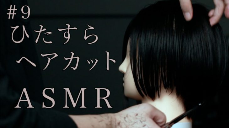 【ASMR】#9 現役美容師がハサミでひたすら髪を切るだけASMR【声なし/No Talking】【hair cut】【sleepy【睡眠】【作業用】