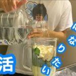 【美肌目指して】健康の為に飲んでる美容スムージーマックシェイク?を紹介。