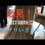 【バッサリカット&カラー&ハイライト】上大岡/ゼクトサウス/美容室