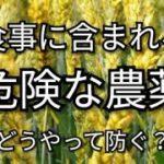 『農薬の危険』 美容専門家(昭和35年5月生まれ)🔥美容美肌最高水準シリーズ47 シミ、しわ、たるみ